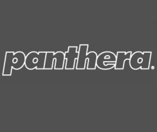Sillas de ruedas Panthera