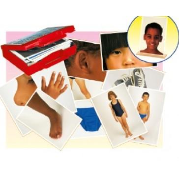 Fotos del cuerpo y prendas de vestir