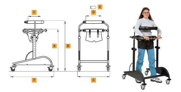 andador-dynamico-uso-interior-dimensiones