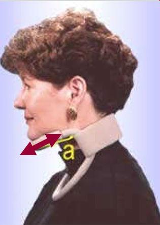 collarin-headmaster-medidas