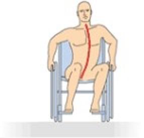 Elegir el ancho de asiento correcto es fundamental para que la persona quede bien posicionada