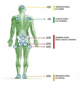 Zonas de riesgo de sufrir escaras o ulceras por presion